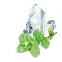 sauna munt kristallen